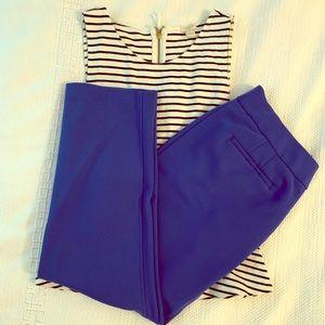 Cobalt Blue Dress Pants
